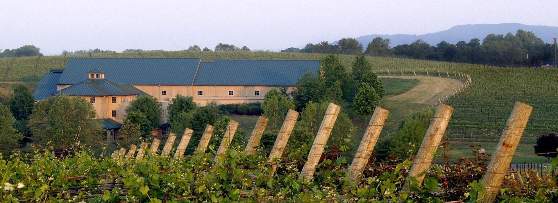 Shelton Vineyards in Surry Co.